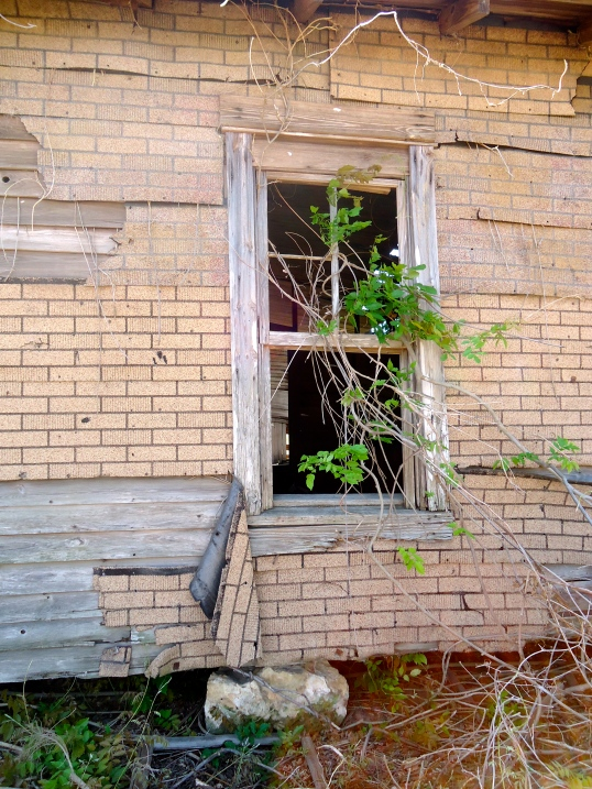 Window on the Left Side