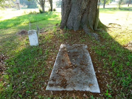 Darlington Plantation, Newton, Baker County | Southwest ...