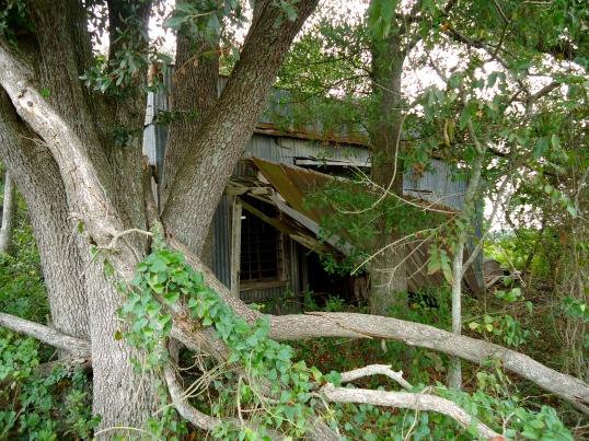 Abandoned Store, Bethany, Baker County
