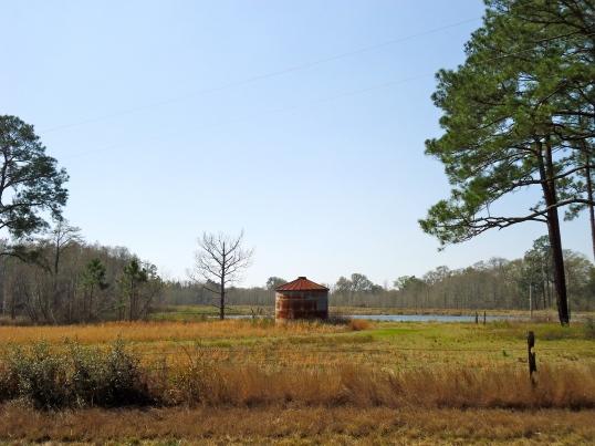 Wolf Pond, Anna, Baker County