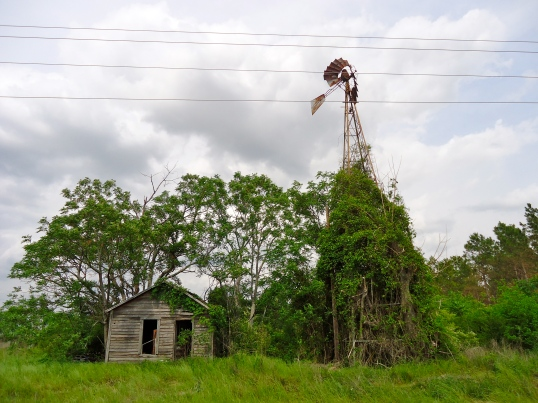 Old Farmhouse and Windmill, Elmodel, Baker County
