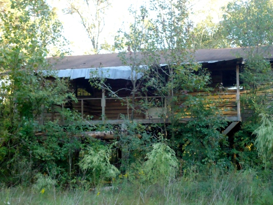 Abandoned House off of the Flint River, Hoggards Mill, Baker County