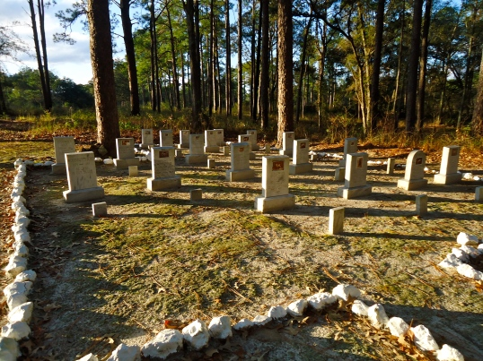 Dog Cemetery 4