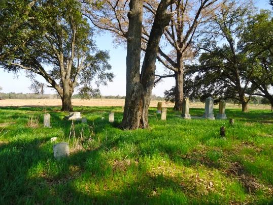 Graves in Pine Grove Cemetery