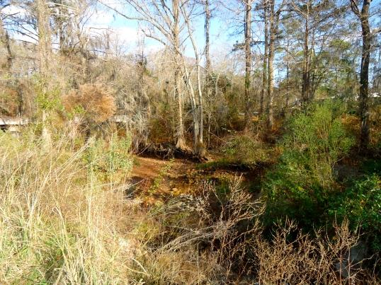 Mill Creek, Ivys Mill, Baker County