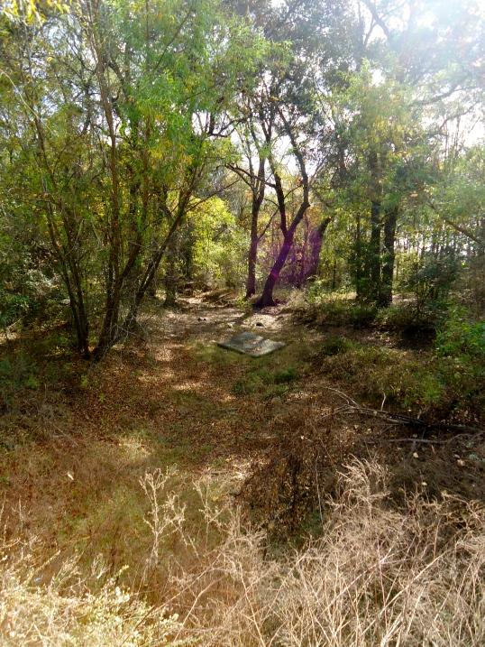 Big Cypress Creek, Phillipsburg, Baker County