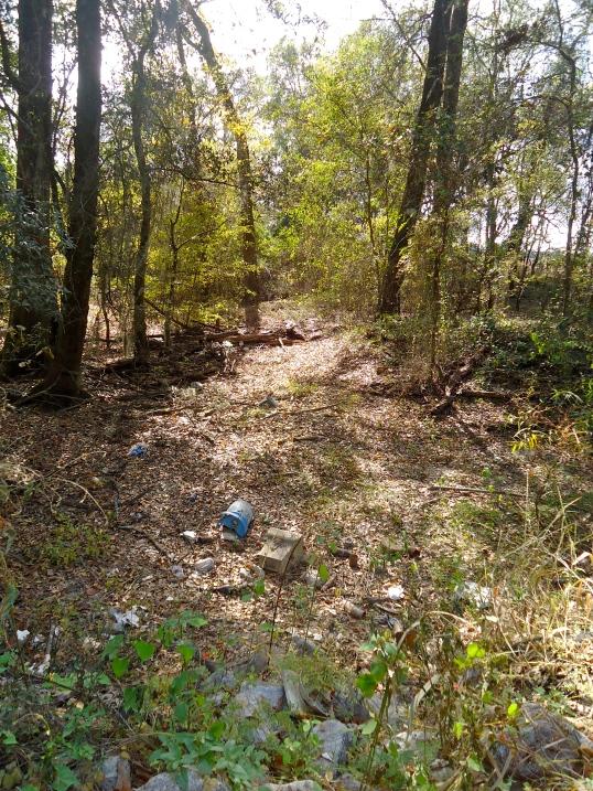 Little Cypress Creek, Phillipsburg, Baker County