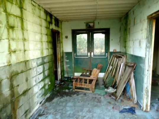 Looking Towards the Back Door