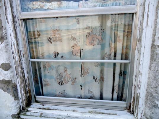 Nursery Window