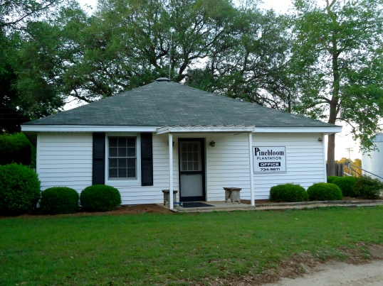 Pinebloom Office