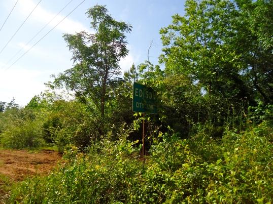 Edison City Limit Sign
