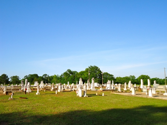 Old Mars Hill Primative Baptist Cemetery 2