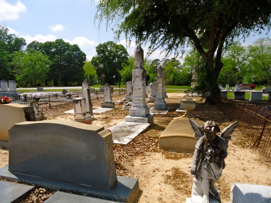 Rows of Wooten Family Graves