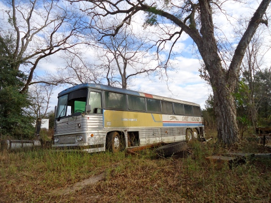 Greyhound Bus in the Bermuda Junk-Yard 2