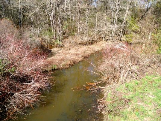 Falling Creek