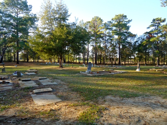 Hopewell Missionary Baptist Cemetery 4